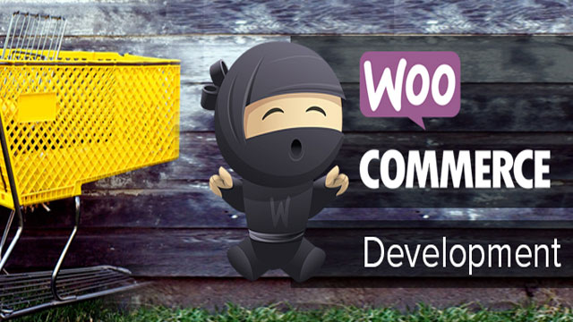 woocommerce development customization